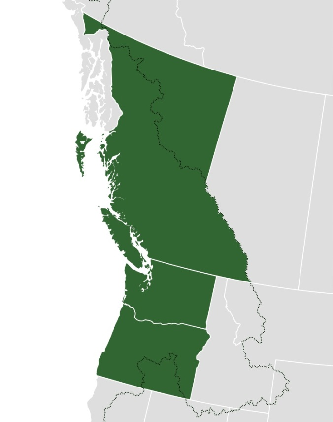 Oregon Real Estate